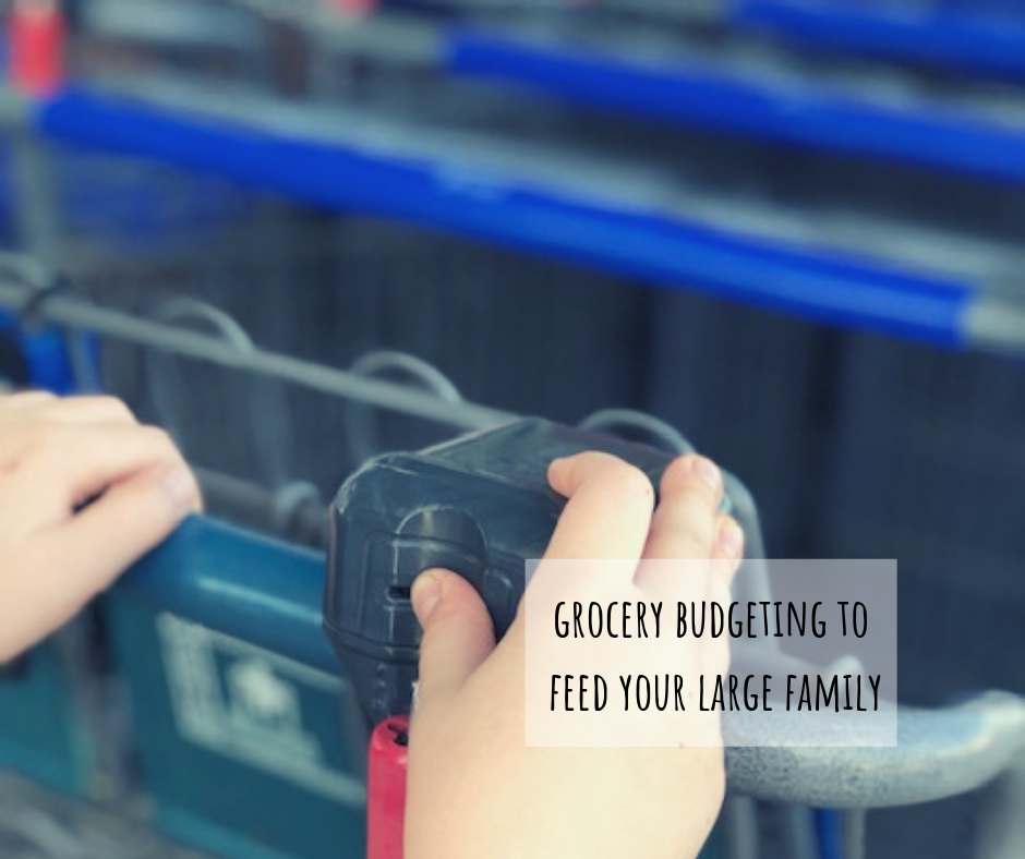 Grocery budgeting to feed your big family, how to master this so your fridge is never empty