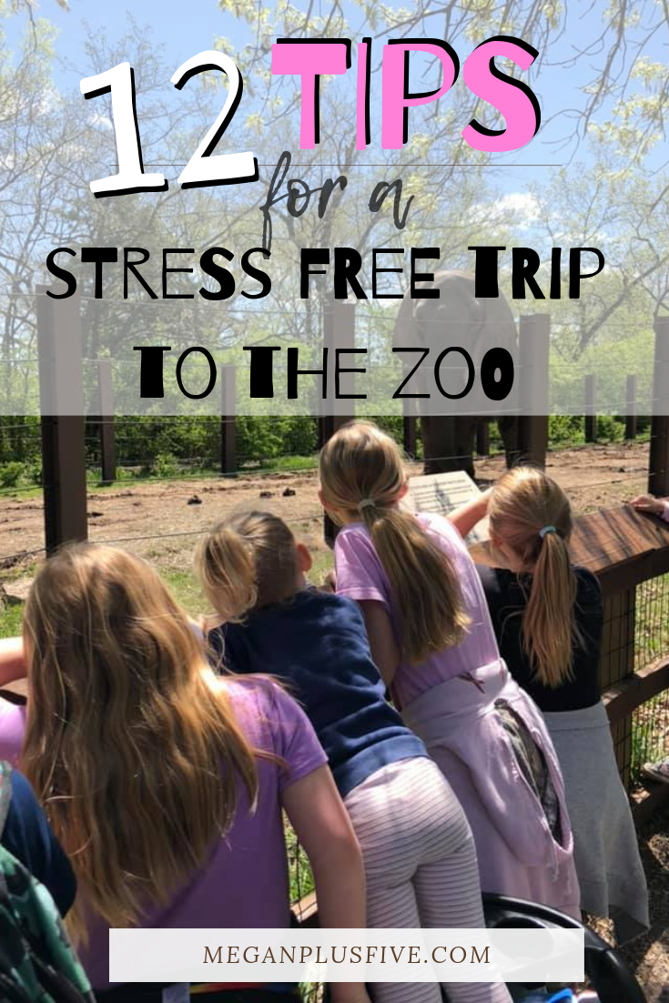 12 tips for a stress free trip to the zoo