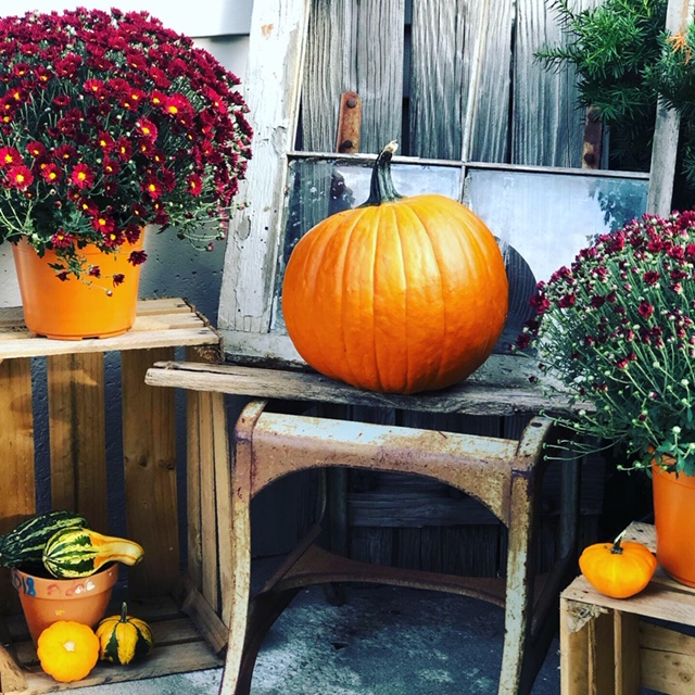 Decorating your porch for FALL on a BUDGET