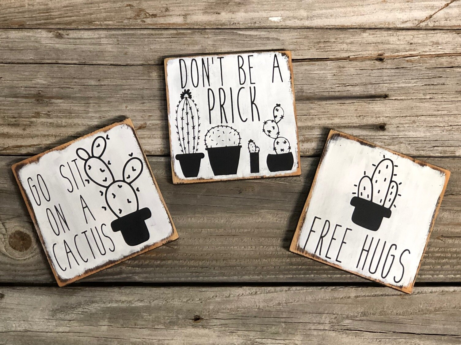 DIY painted wood funny cactus signs