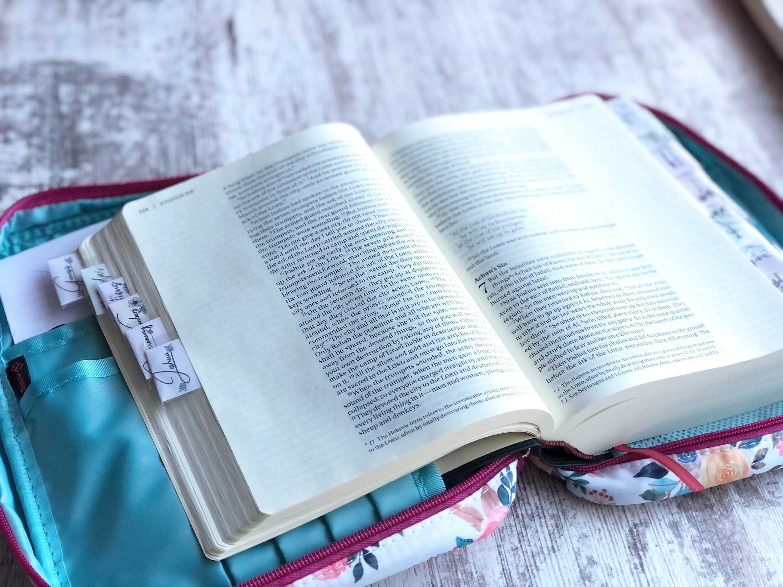 Floral bible cover and feminine bible tabs