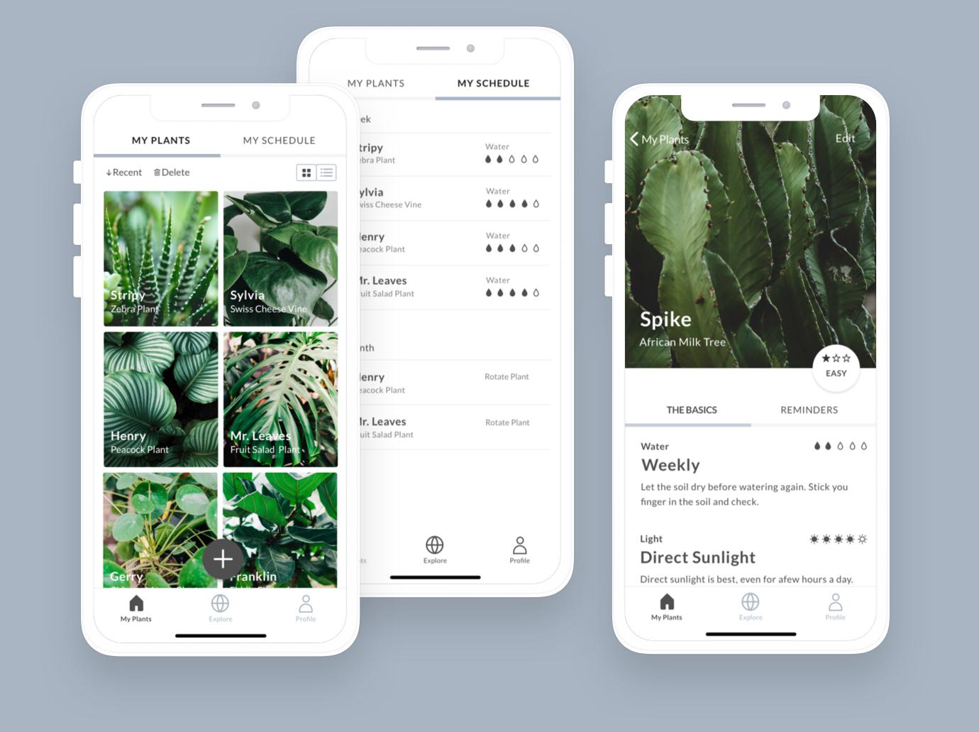 homepage-urban-botanist.jpg