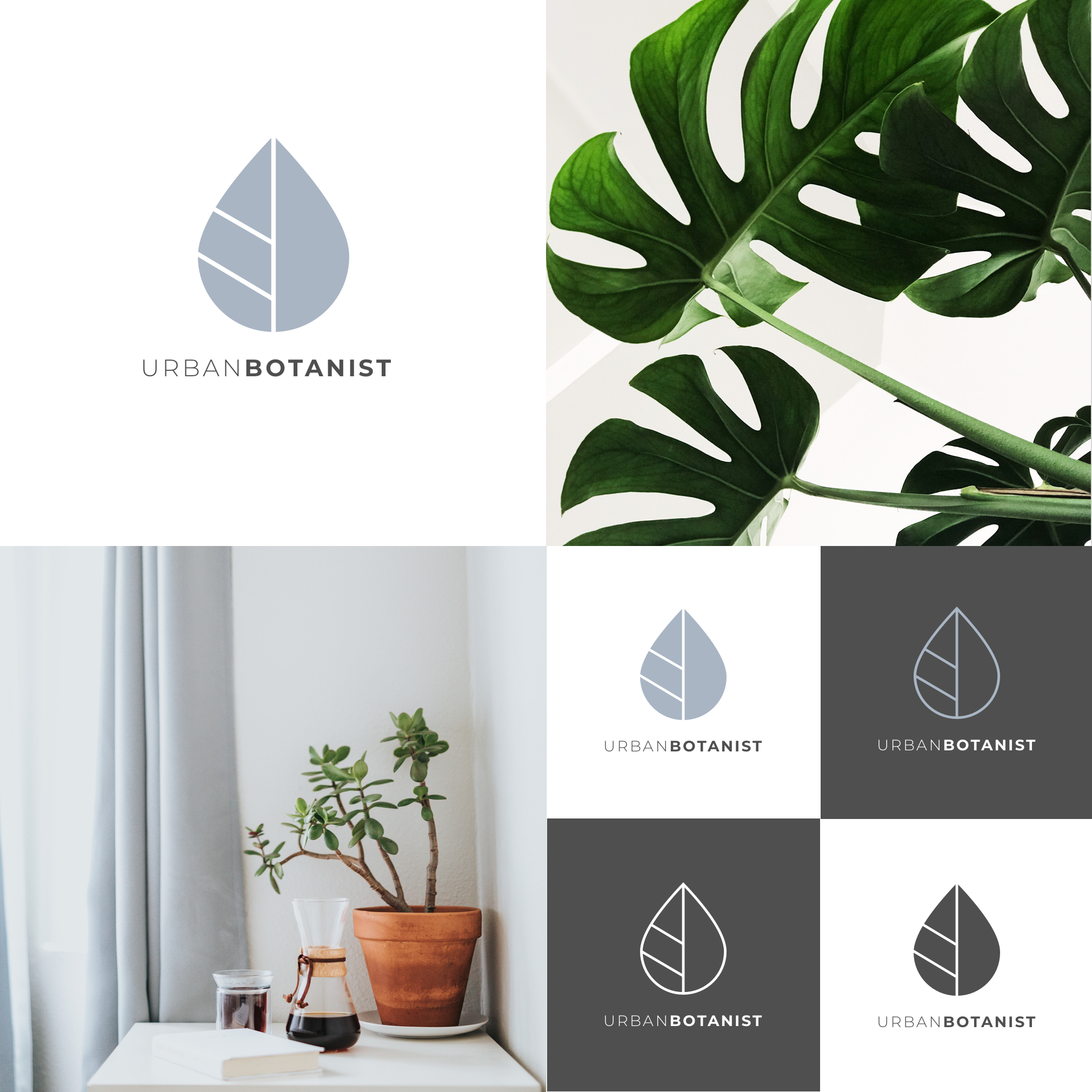 The Urban Botanist logo reflects both the water droplet and plant leaf.
