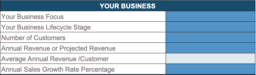 XS-BudgetTool1-YourBusiness.png