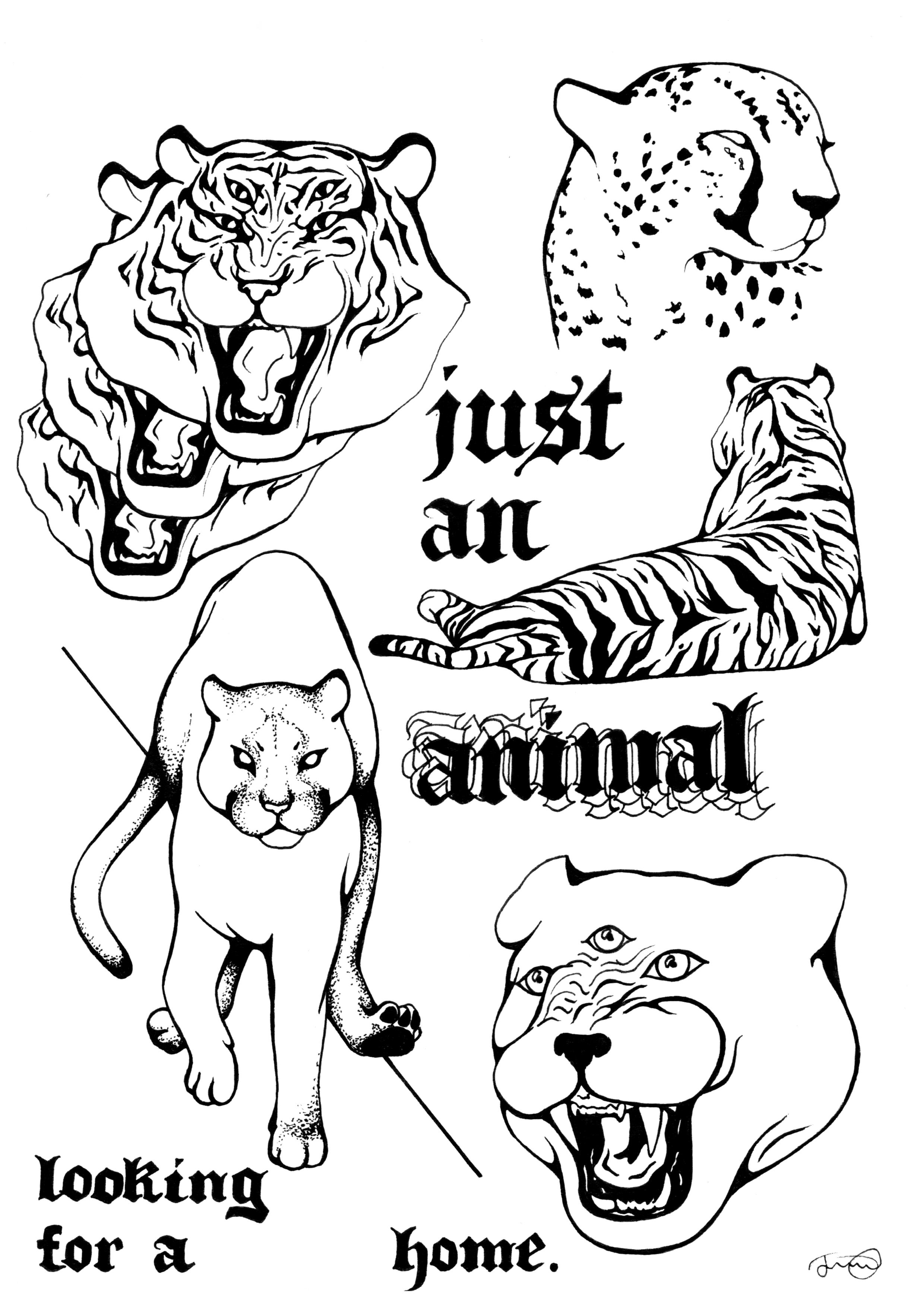 just an animal1.jpg