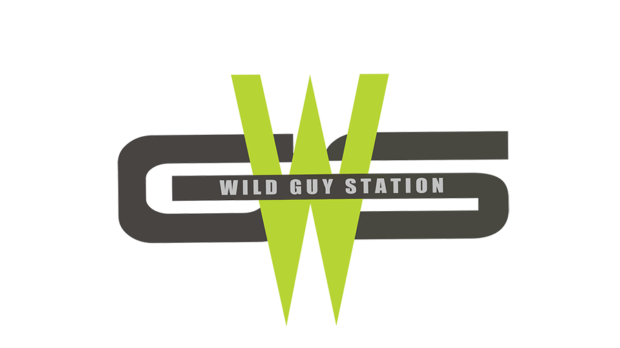 WGS NEW LOGO FINAL smaller 2.png