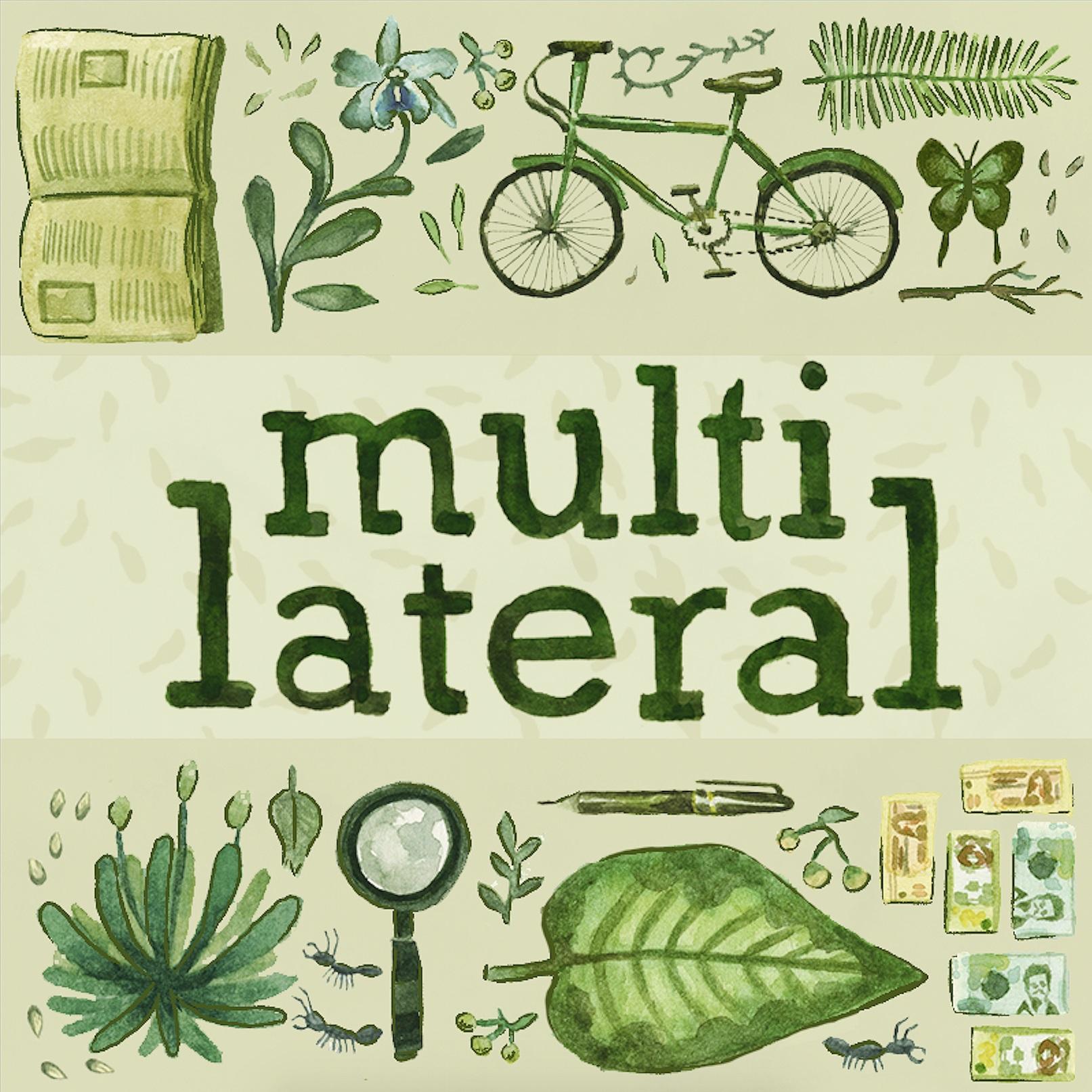 Multilateral.jpg