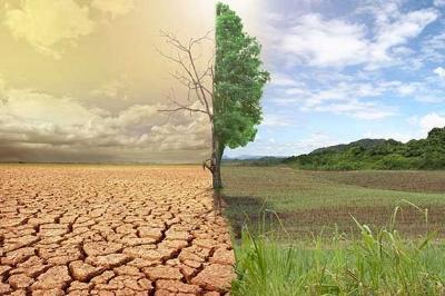 Impacte environnement.jpg