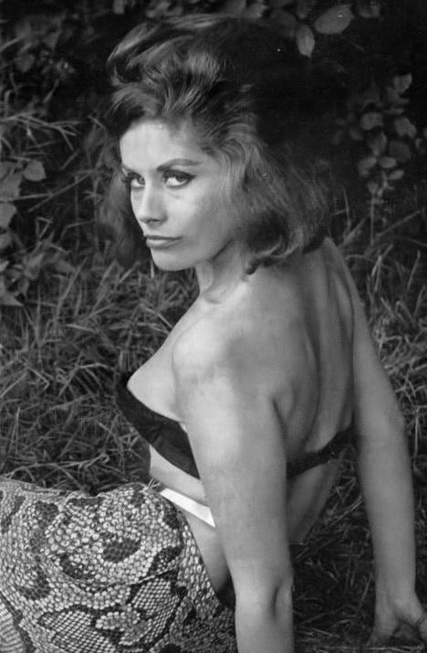Dawn Grayson (1) - 2.jpeg