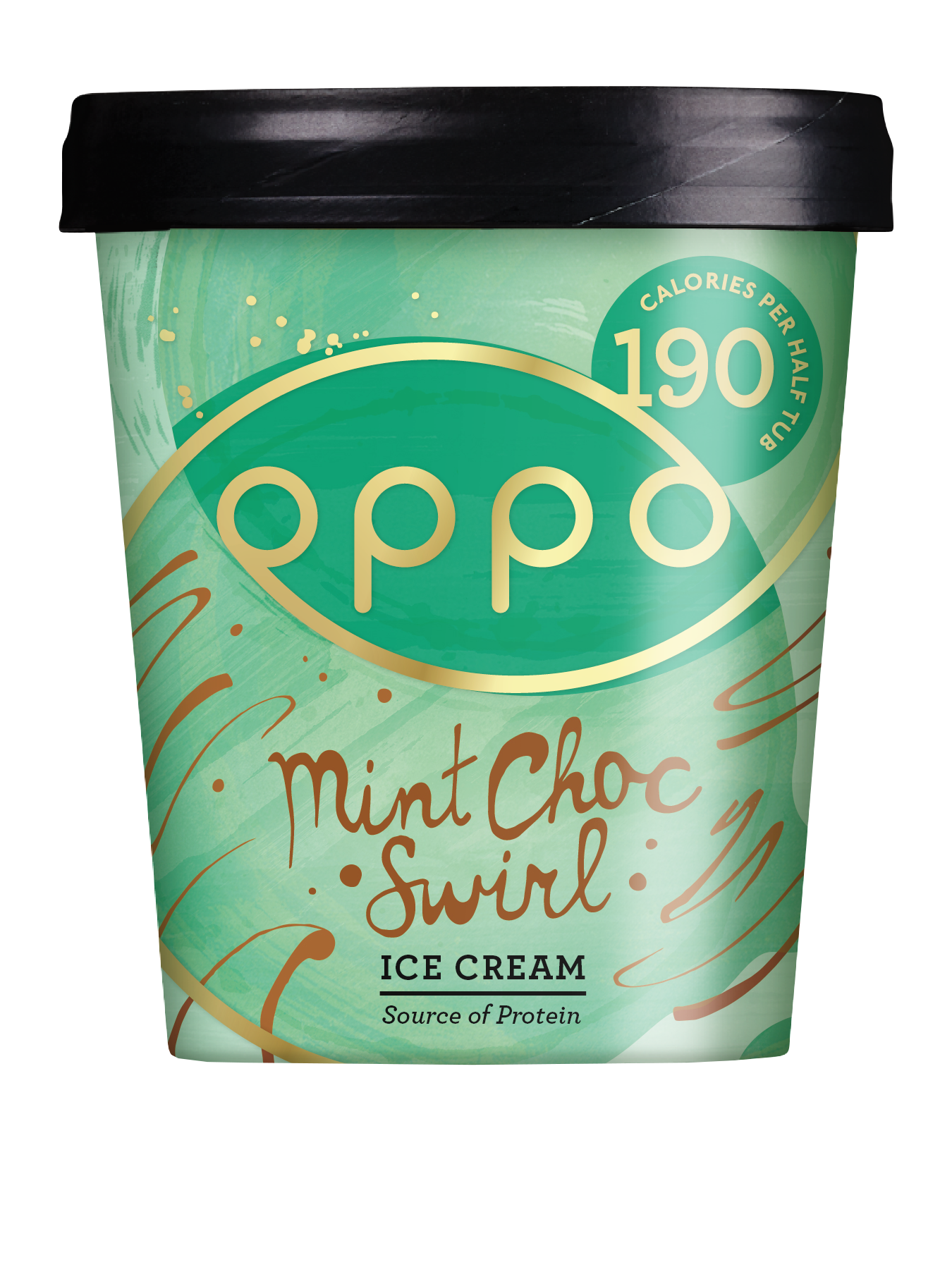 Oppo_475ml_IceCream_Visuals_MintChoc-no mirror.png