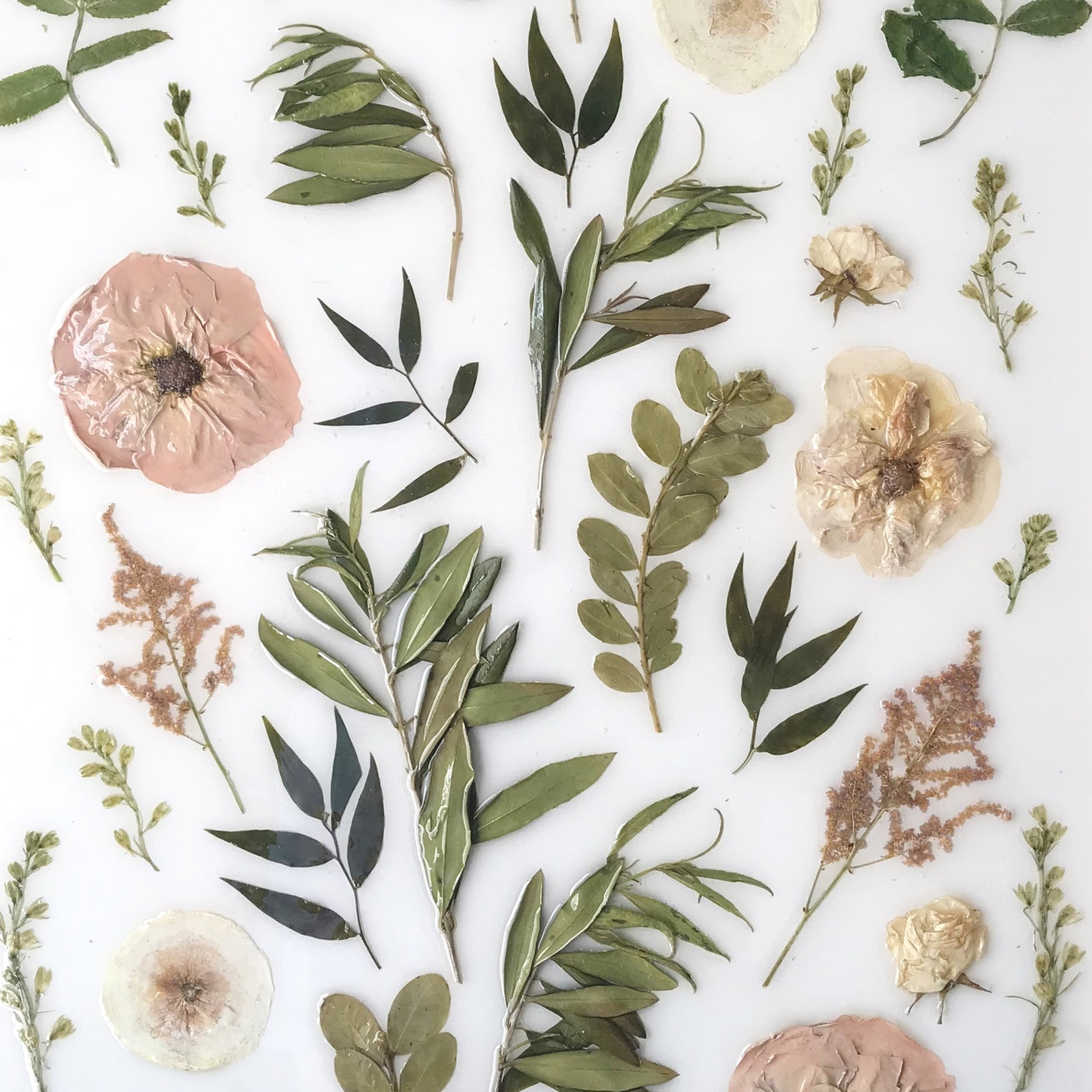 Wren & Rose Floral Design | Shelby Wren Boykin | Mississippi Wedding Florist | Floral Design | Pressed Flowers | Bouquet Keepsake | Bouquet Preservation