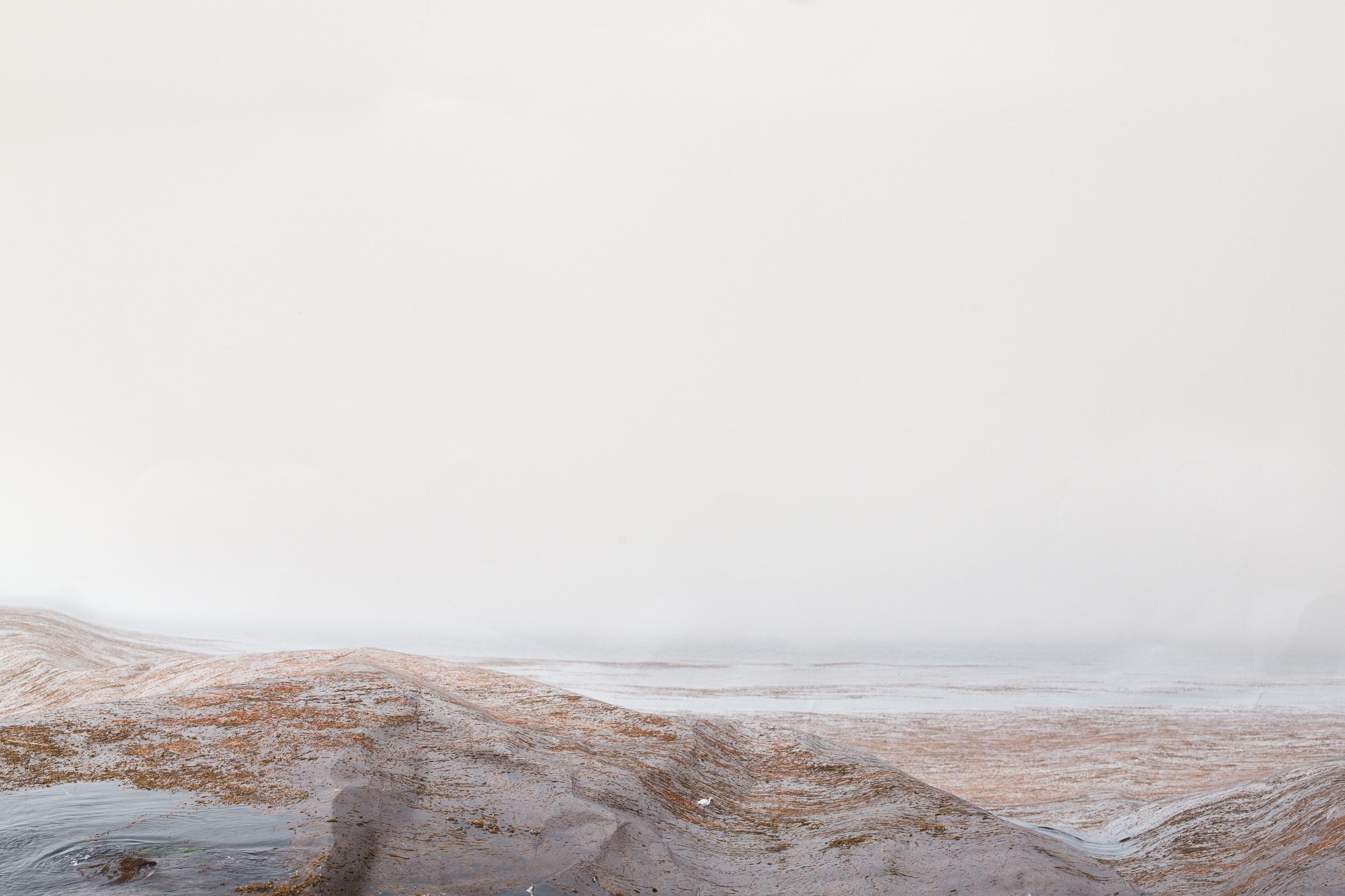 Laura Plageman,  Pacific Grove (Study No. 1) , 2013  Digital pigment print, 8 x 12 in, edition of 5   Inquire