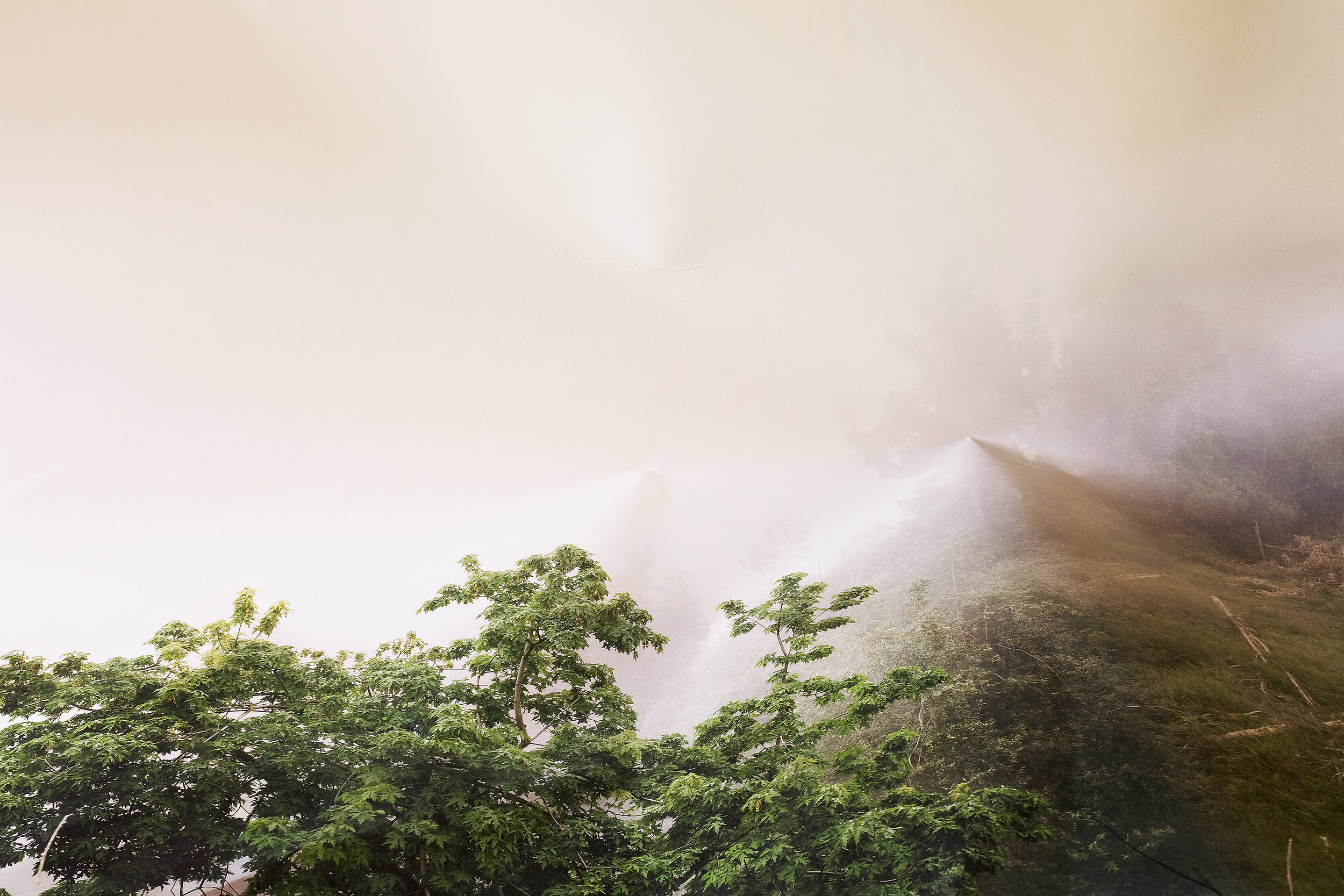 Laura Plageman,  Response to Trees and Fog, California , 2010  Digital pigment print, 16.2 x 24 in, edition of 10   Inquire
