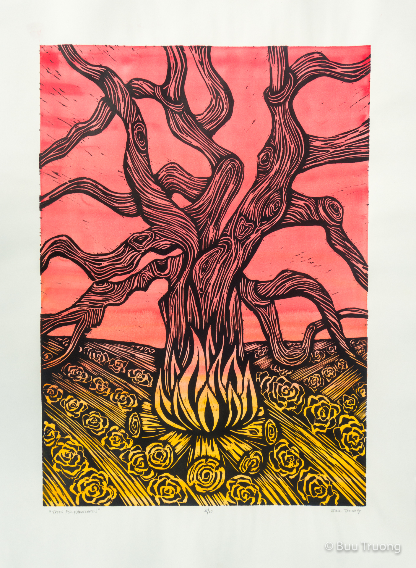 Trees for Farmlands (BW with Red Yellow)