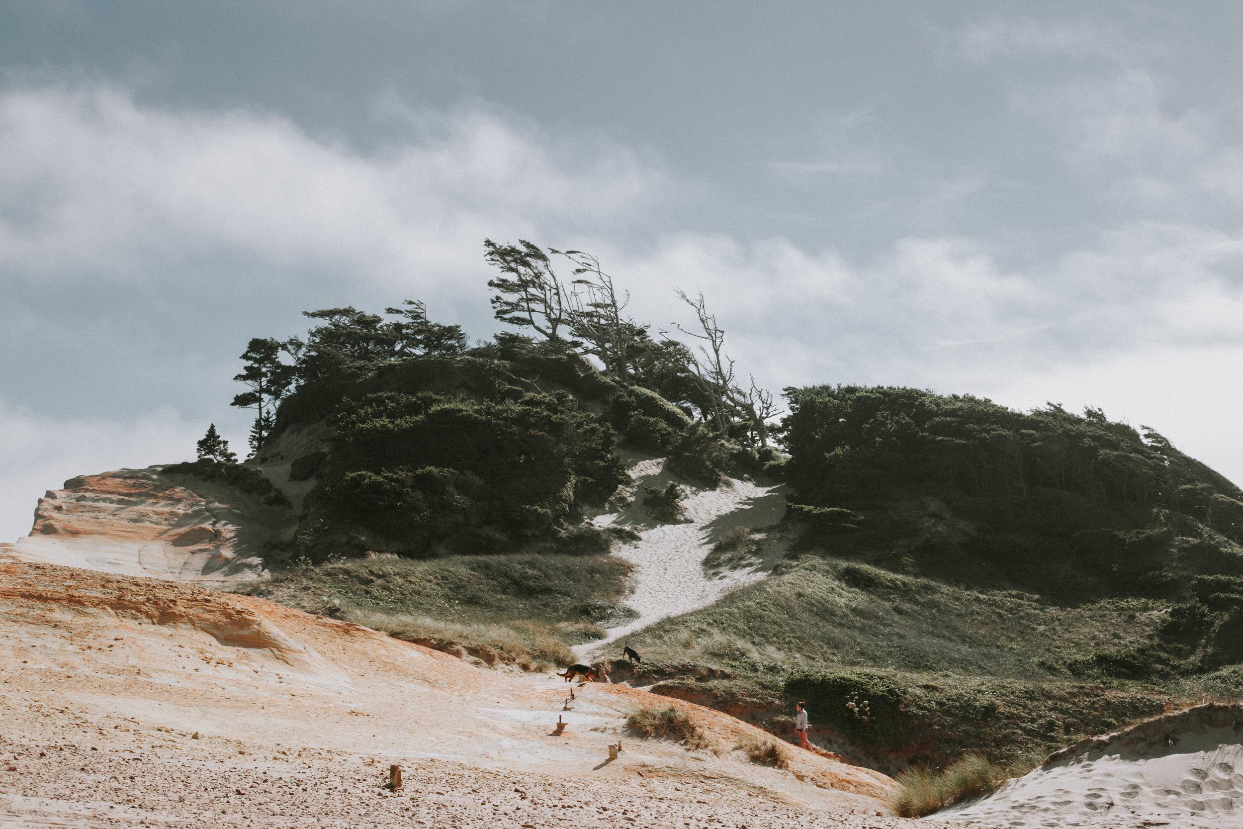landscape (9 of 1).jpg
