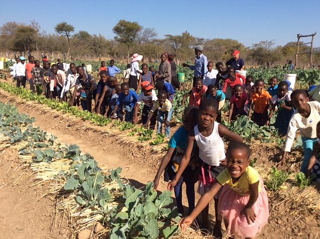 Lukampa Community Garden, Nkayi Zimbabwe