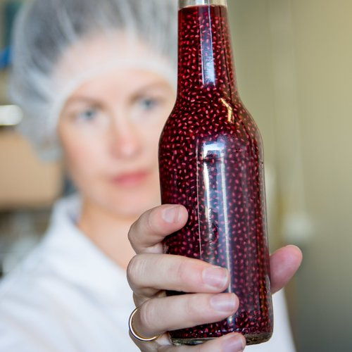Chia Sisters blueberry chia drink