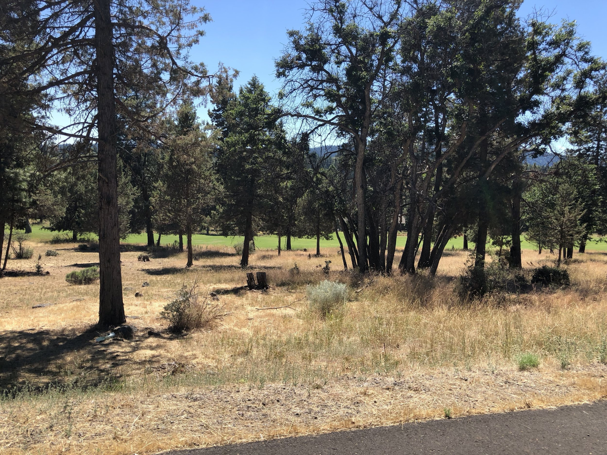 Perfect Golf Course View Lot 45. $39,000. Click the photo for more information.