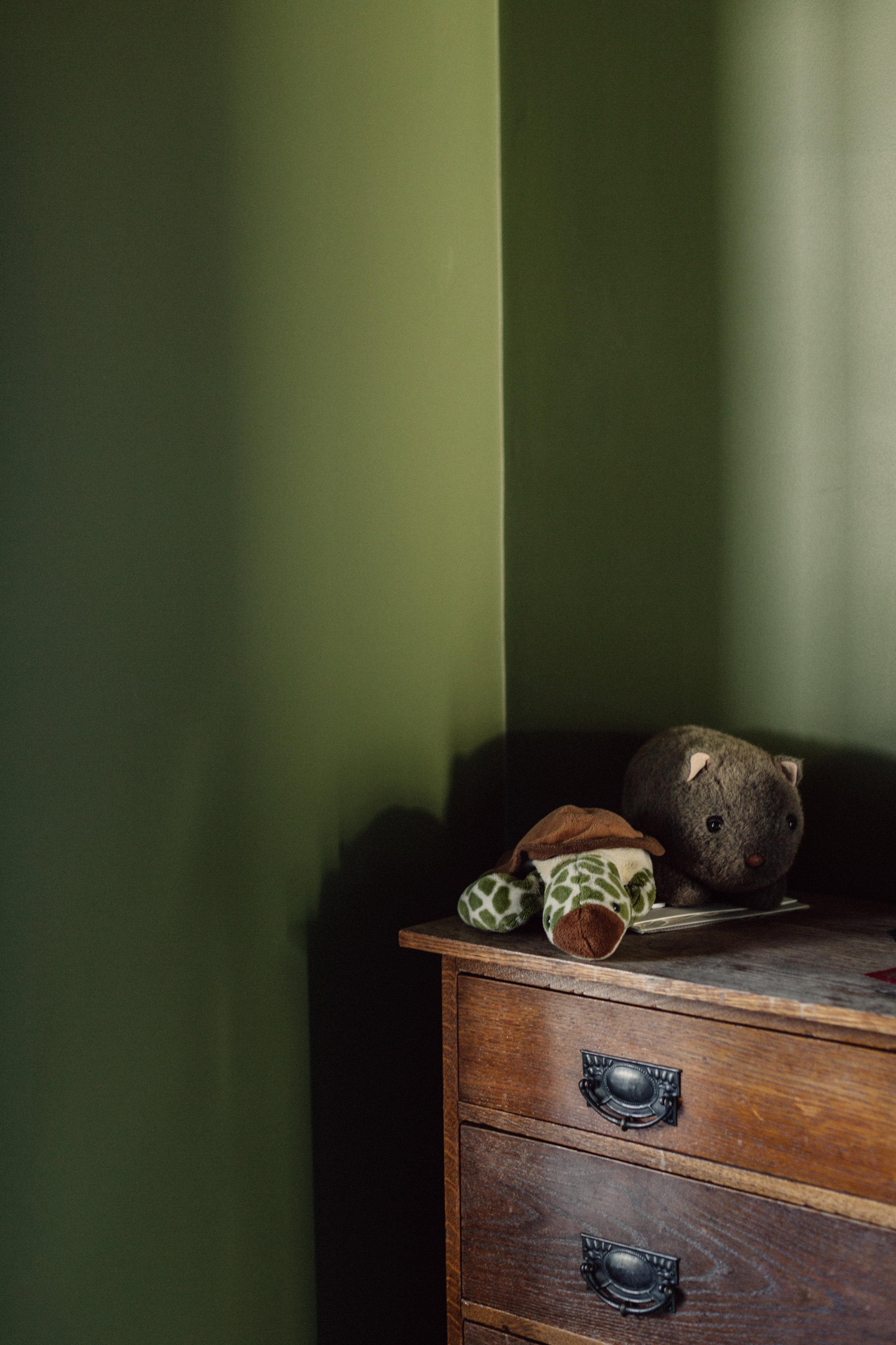 Takt Coledale Blade House bedroom detail wombat.jpg