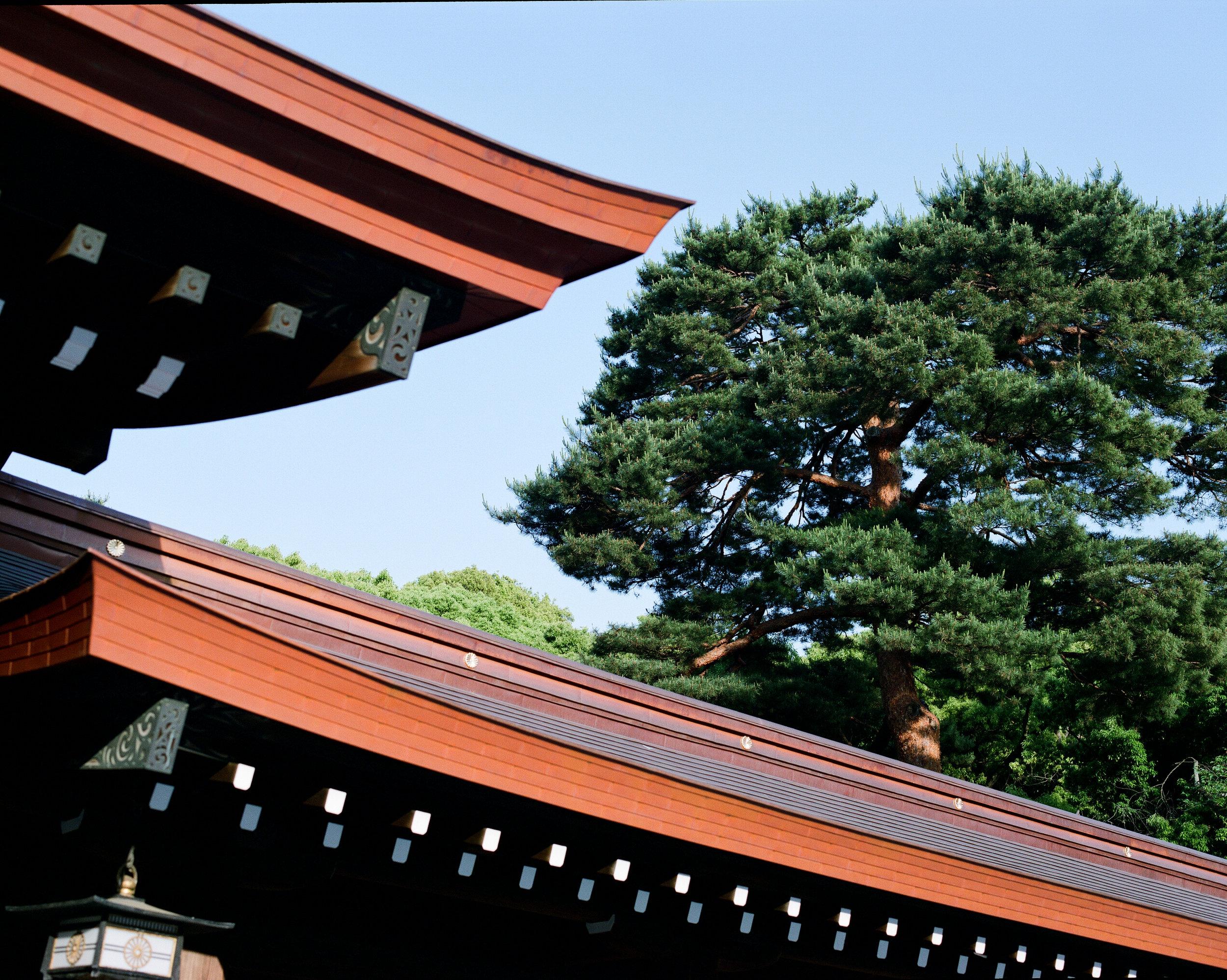 TOKYO_000011140004.jpg