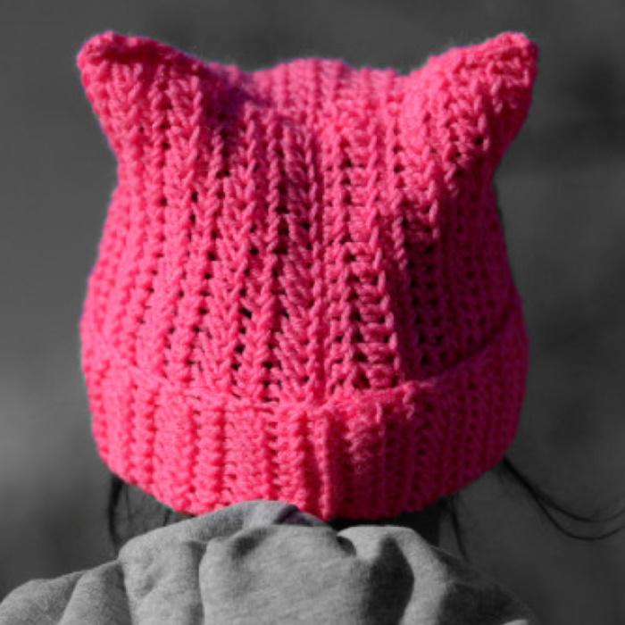 Pussy Hat - 700.jpg