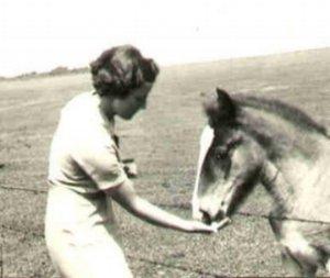 8+pony.jpeg