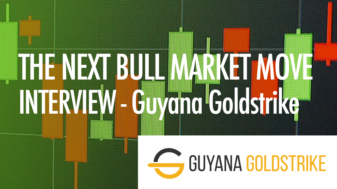 THE-NEXT-BULL-MARKET-MOVE-THUMBNAIL-GUYANA-NEW.jpg