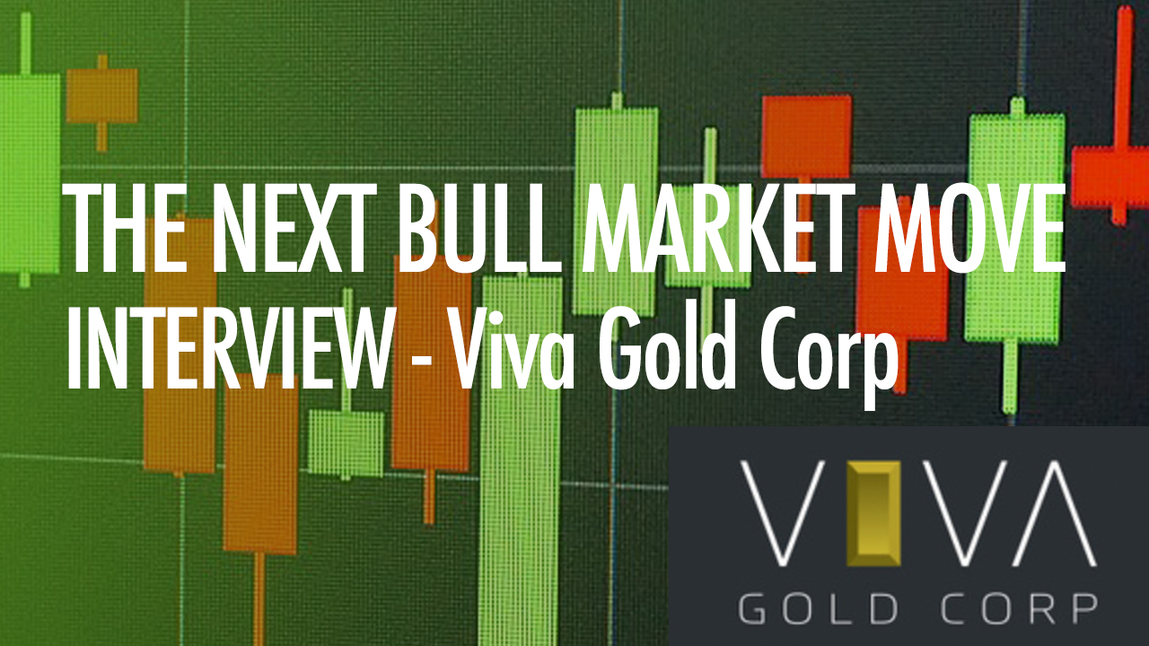 THE-NEXT-BULL-MARKET-MOVE-THUMBNAIL-VIVA-NEW.jpg