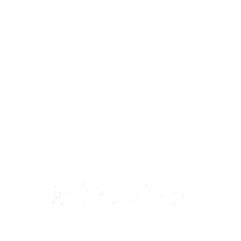 ArpKord Records logo (bem17)(white)(rip).png