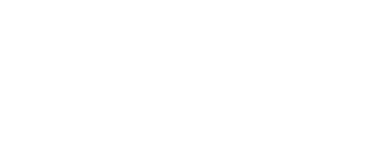 BAS 1 logo (bem17)(White) copie.png