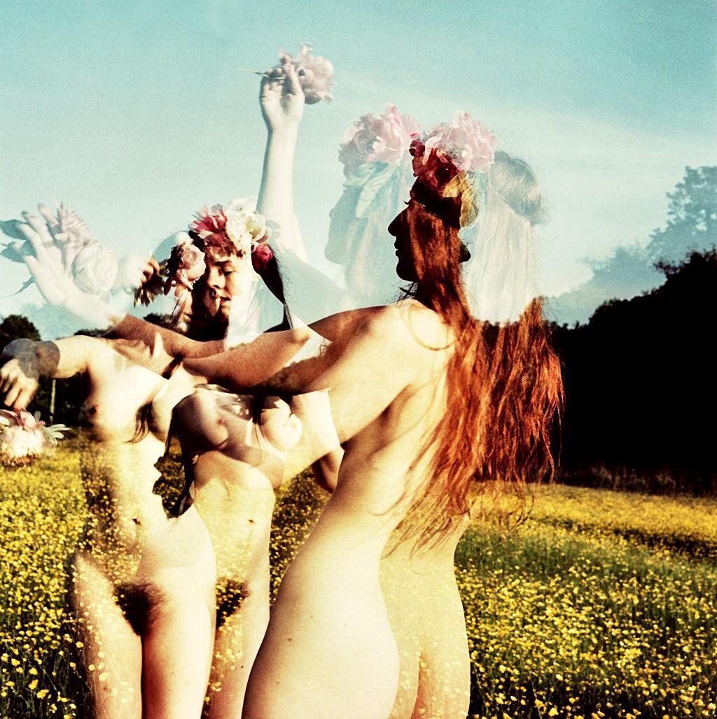 Meadow Rituals 2.jpg