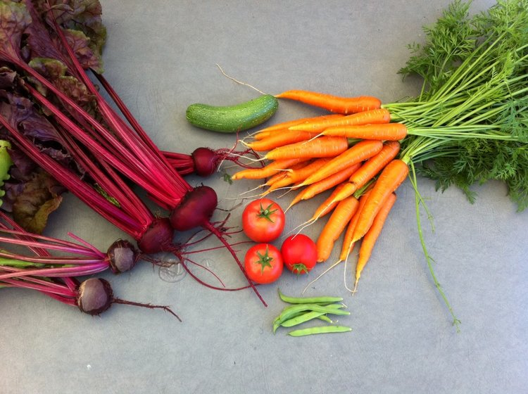 A good day's harvest from my garden a couple of years ago.