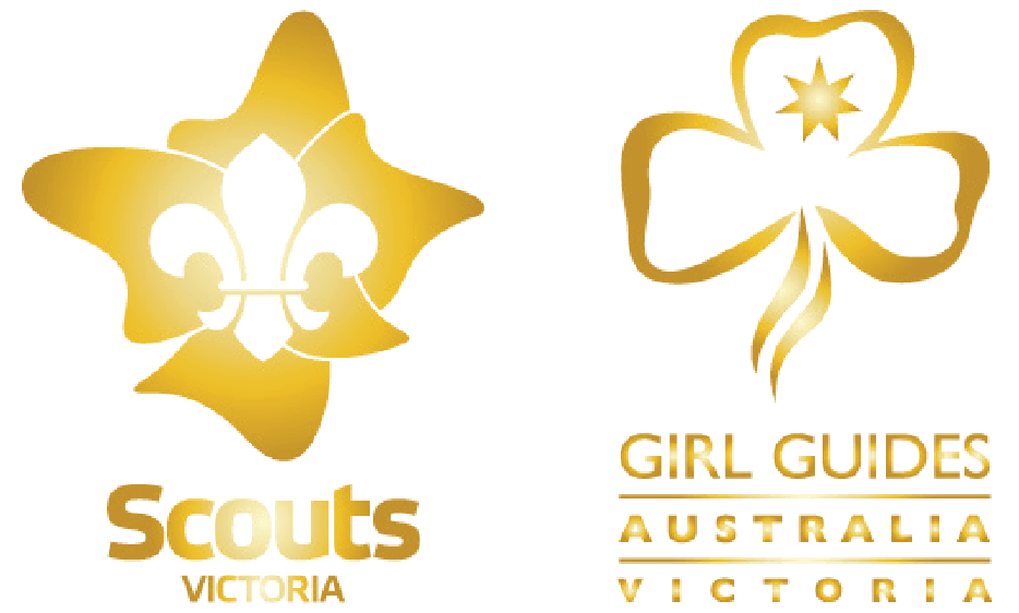 ScoutsGuidesGold-01 (1).png