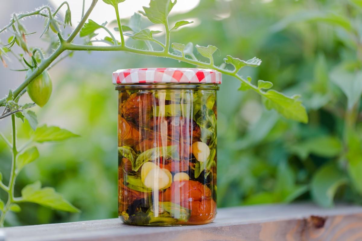 homemade_italy_mediteran_tomatoes_garlic_jar_dried_sun_dried_tomatoes-800084.jpg!d.jpg