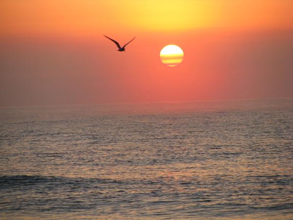 Sunrise over Edisto Beach