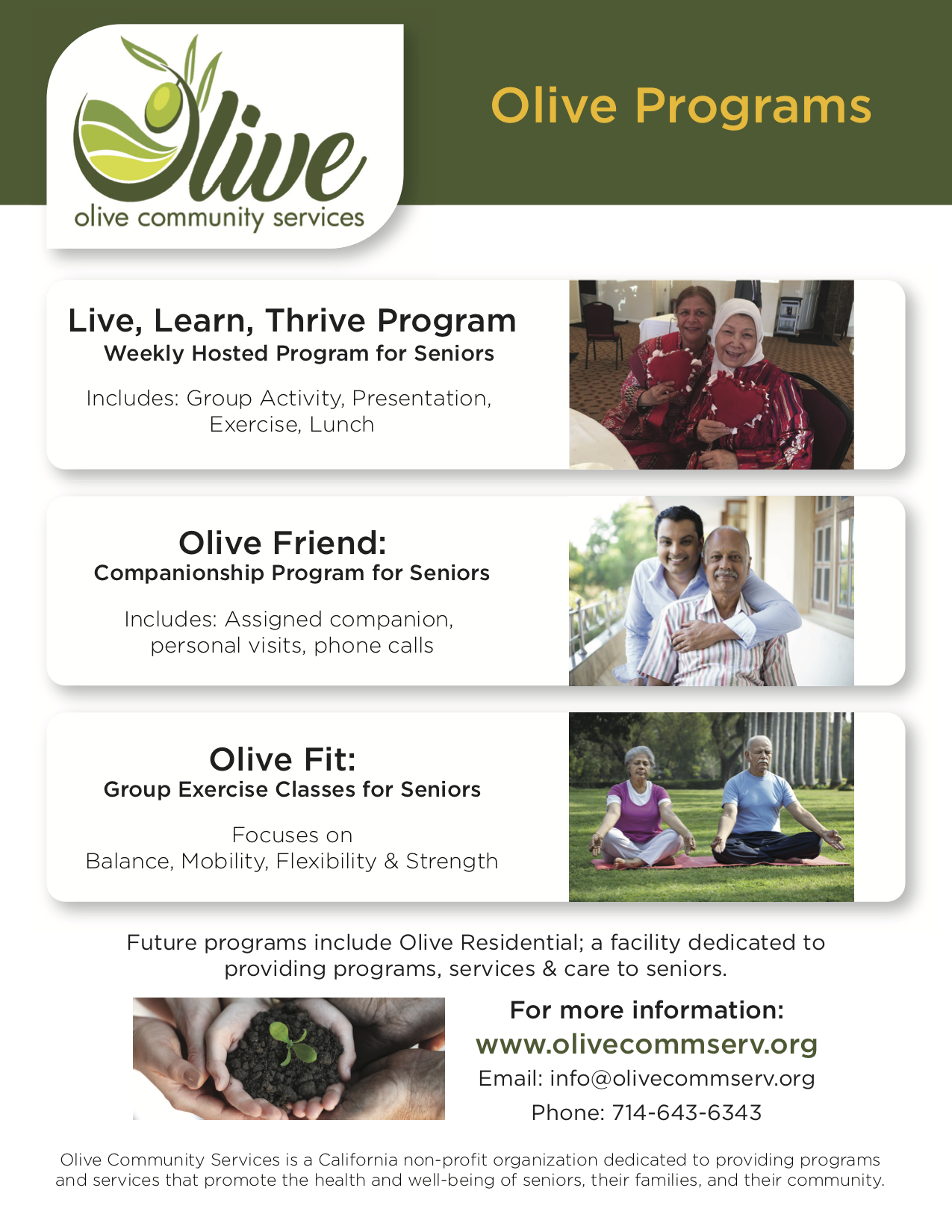 Olive Program Flyer V3.png
