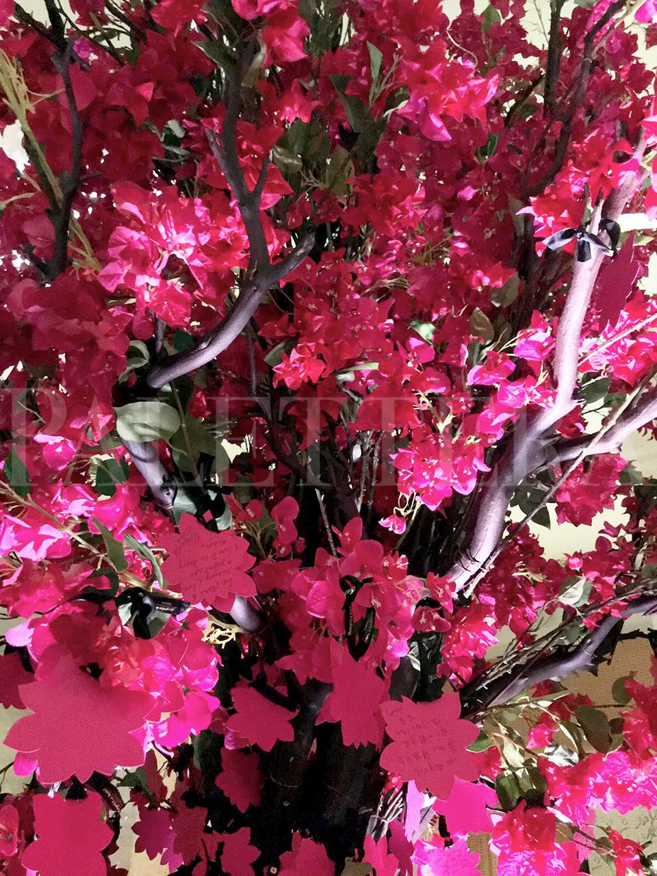 tree1_watermarked.jpg