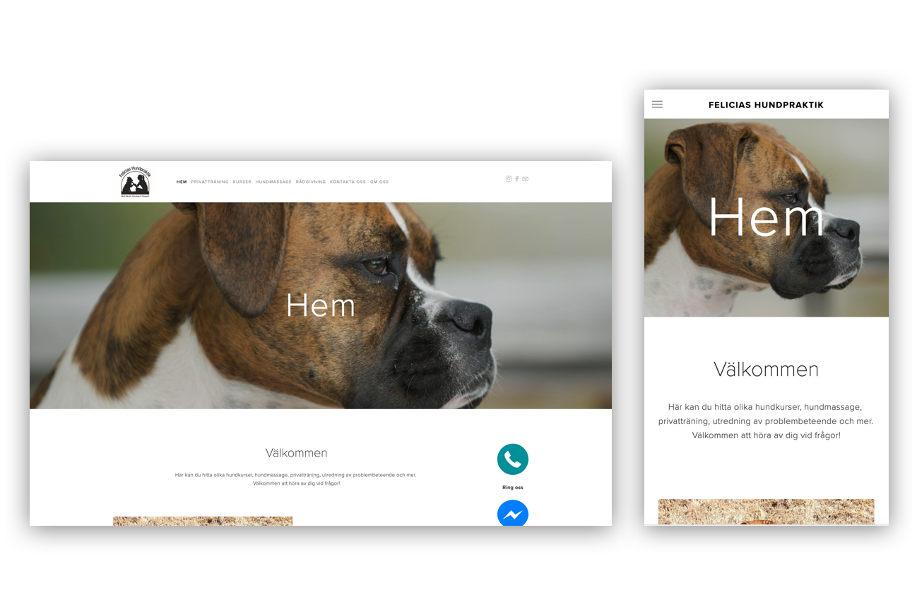 Felicias Hundpraktik - Business Page for a local business in Skåne, Sweden.