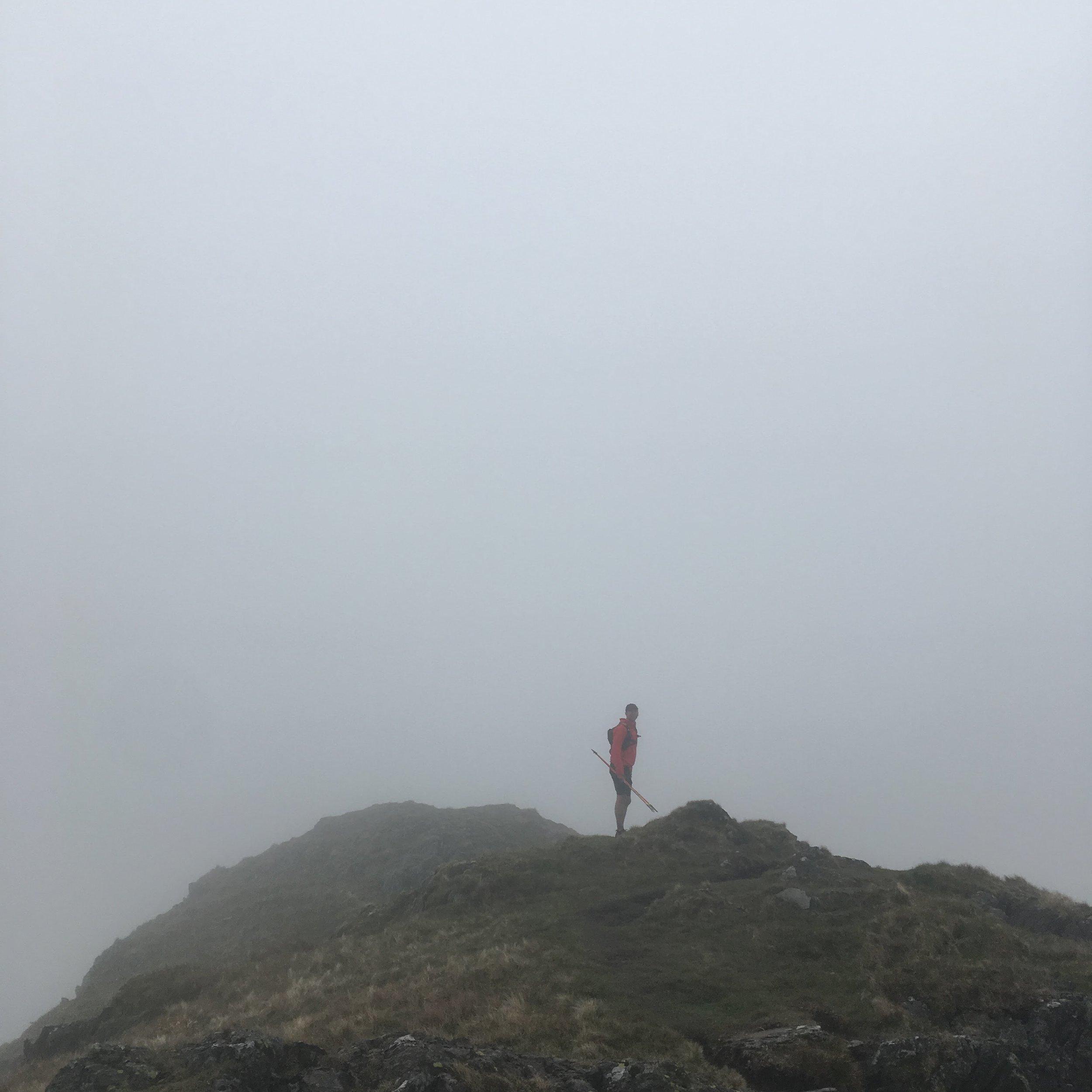 Pip on a foggy Cnight