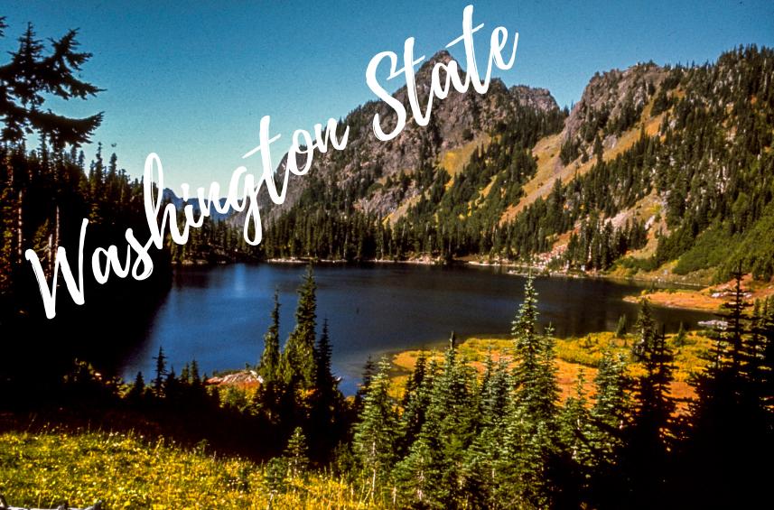 Washington_State.png