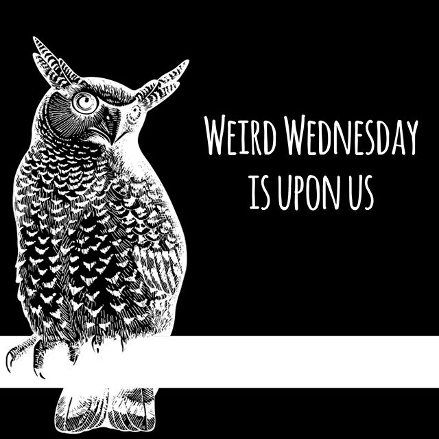 What's weird in the world today? Join The Strange Room on Facebook and stay in the loop for everything weird and wonderful in the world. Because life is better when it gets a little strange... #strangepods #straightupstrange #thestrangeroom #weirdwednesday #podcastnetwork
