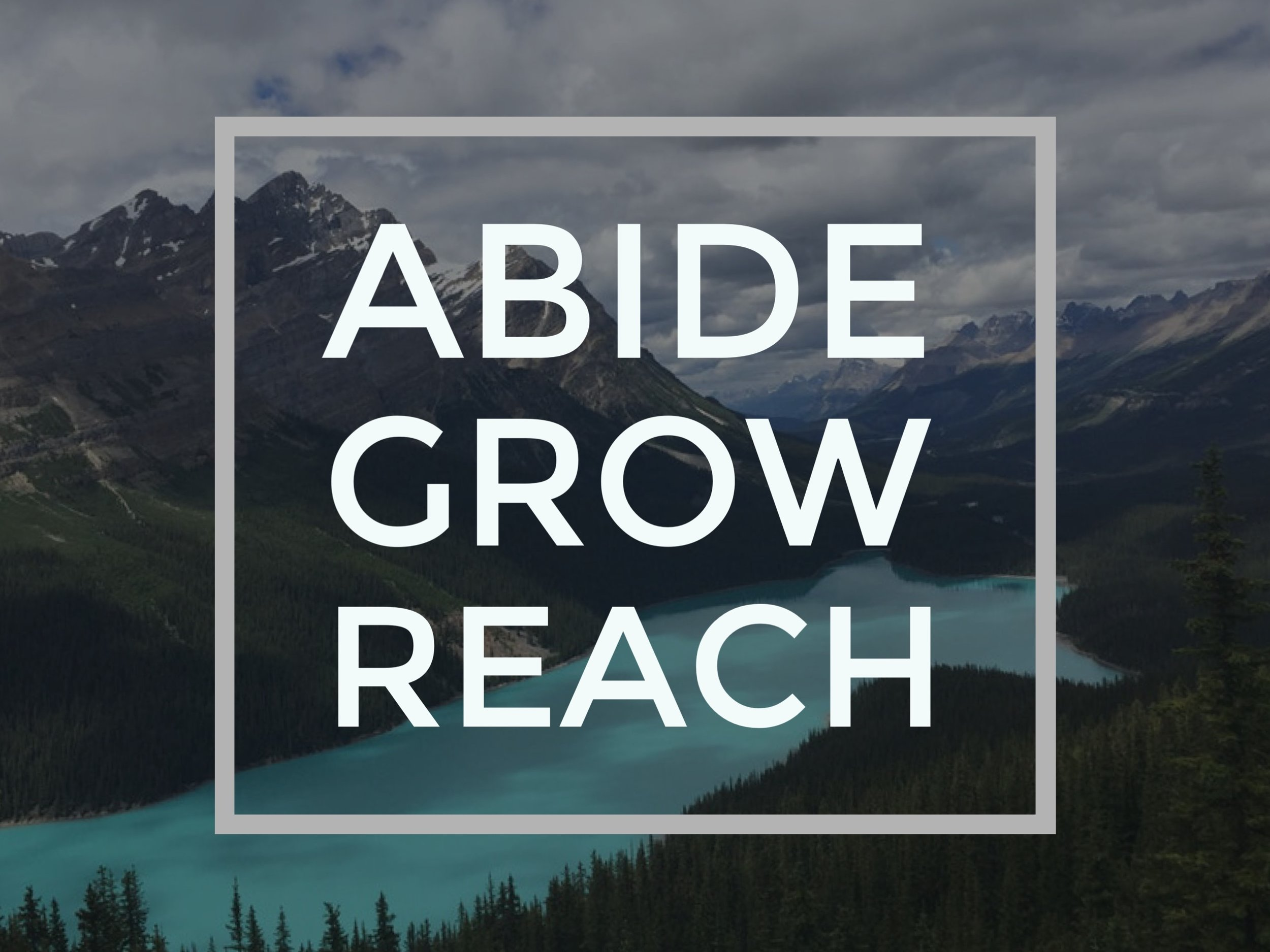 ABIDE_GROW_REACH.jpeg
