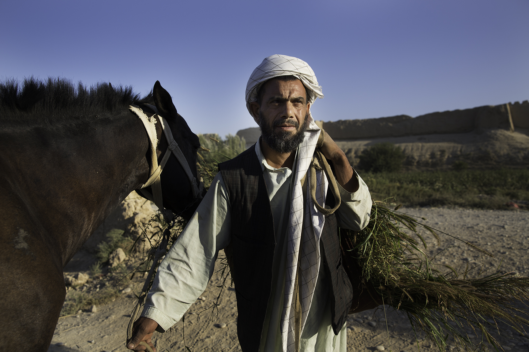 A farmer carries fresh forage for his horse near the Old Balkh city wall, a daily chore that has remained the same since Alexander the Great set up camp here in 330 BCE and left the lasting imprint of Greek civilization in central Asia.