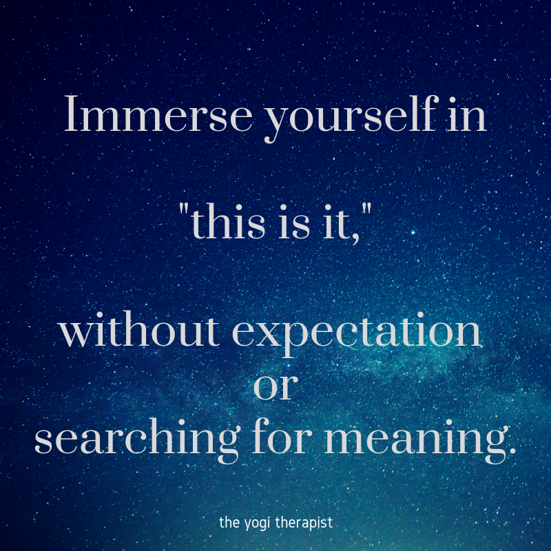 Immerse yourself in_this is it,_without expectation or searching for meaning..png