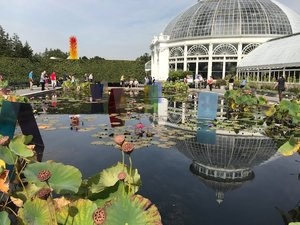 New York Botanic Garden - Breathtaking botanic garden. Don't miss the Everett Children's Adventure Garden.