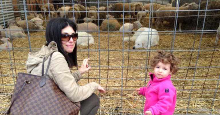 Stone Barns Center - The most gorgeous working farm and agricultural center.