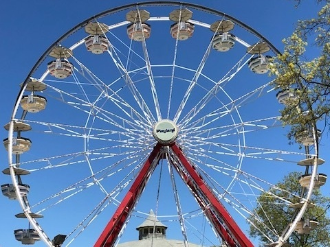 Rye Playland - A local amusement park that is also a National Historical Landmark.