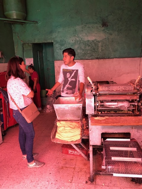 Learning About the Tortilla Making Process