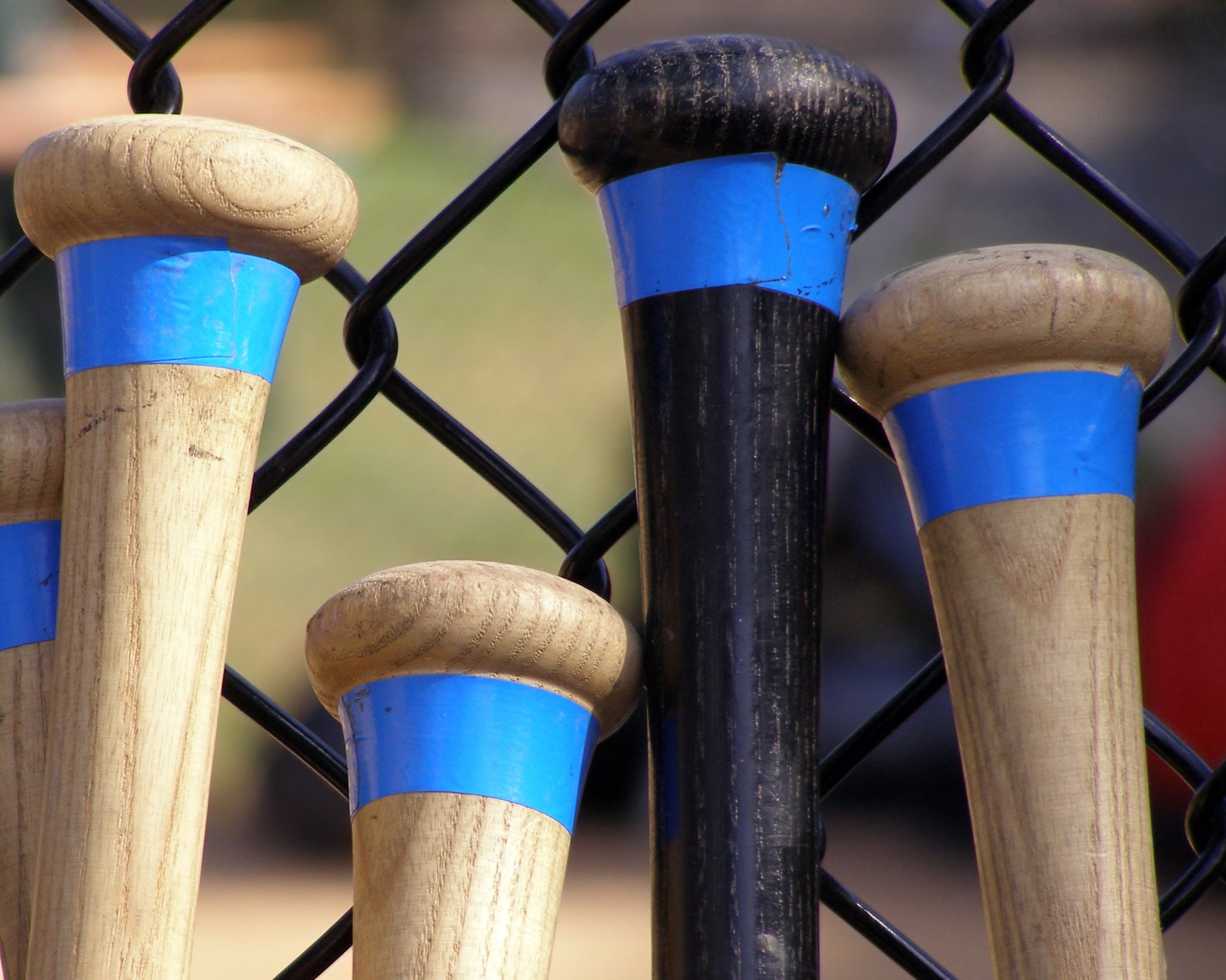bigstock-Baseball-Bats-970794.jpg