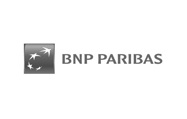 BNP PARIBAS_GRIS.png